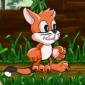 Toffy Cat