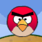 Rolling Angry Birds